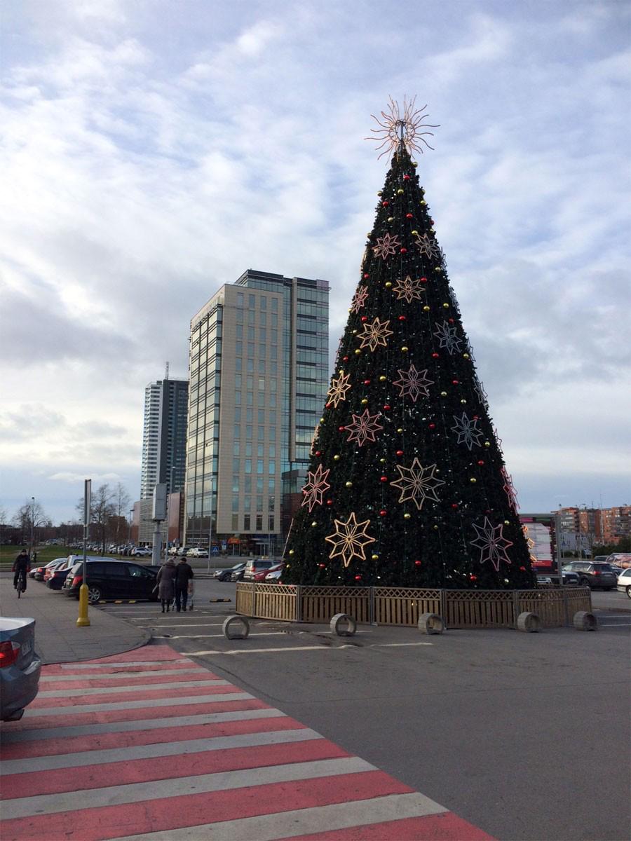 Reisetag 6 Weihnachtstransport 2016 - Weihnachtsbaum
