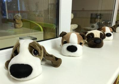 waisenhaus-hundeparade