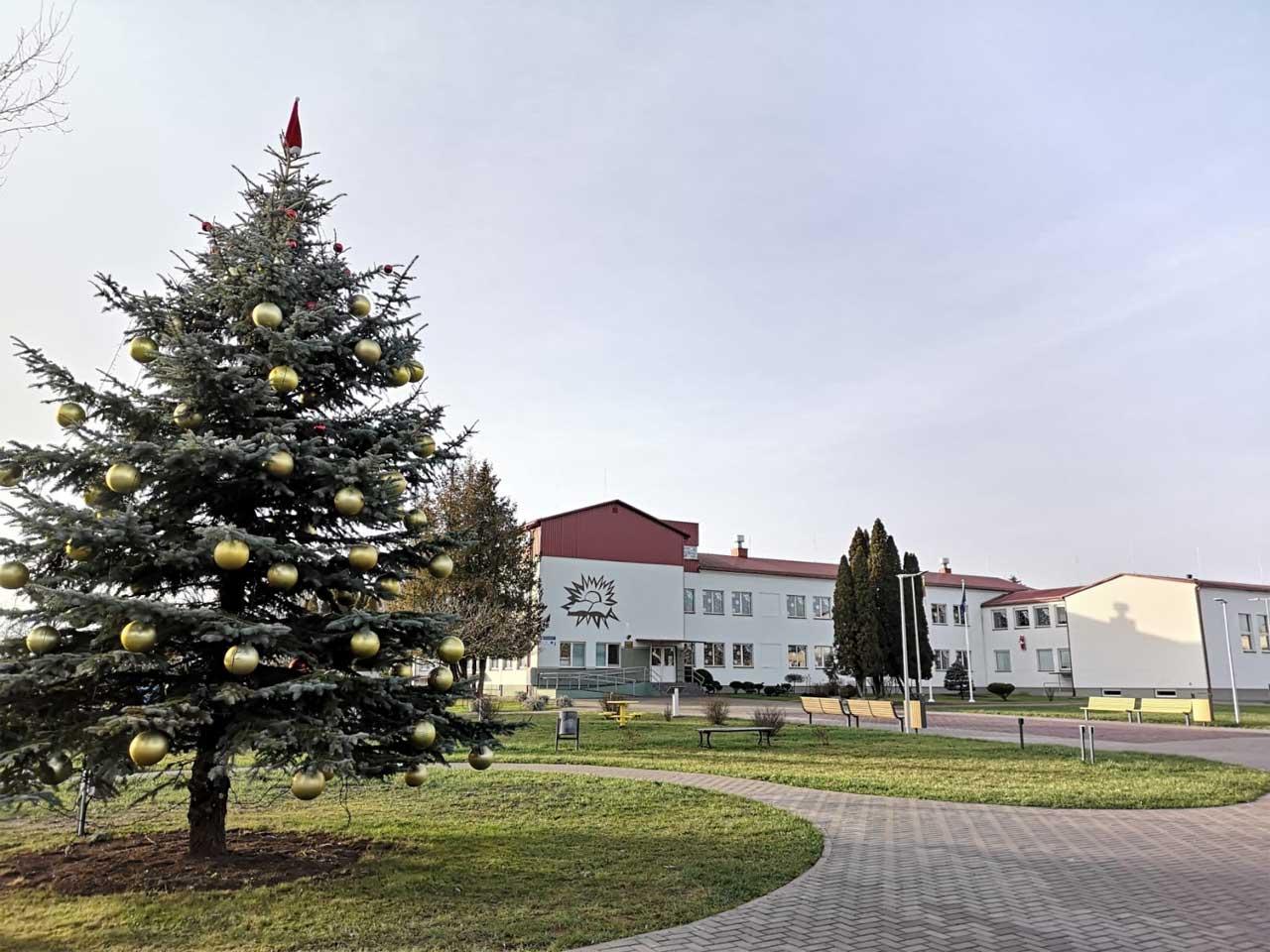 Weihnachtsfeier 2019 in Zelsva - Weihnachtsbaum vor der Schule